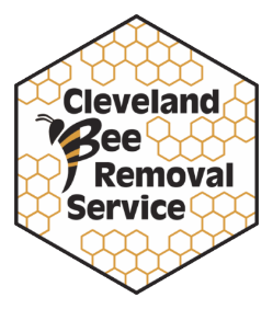 Cleveland Bee Removal | Bee Control And Removal